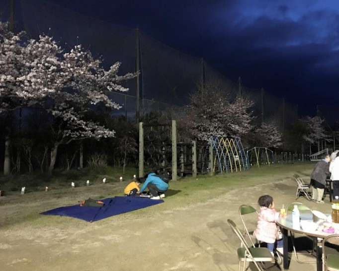 旧細河小学校で夜桜の会が開催されていました。