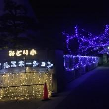 池田市立緑ヶ丘小学校のクリスマスのイルミネーションが綺麗☆