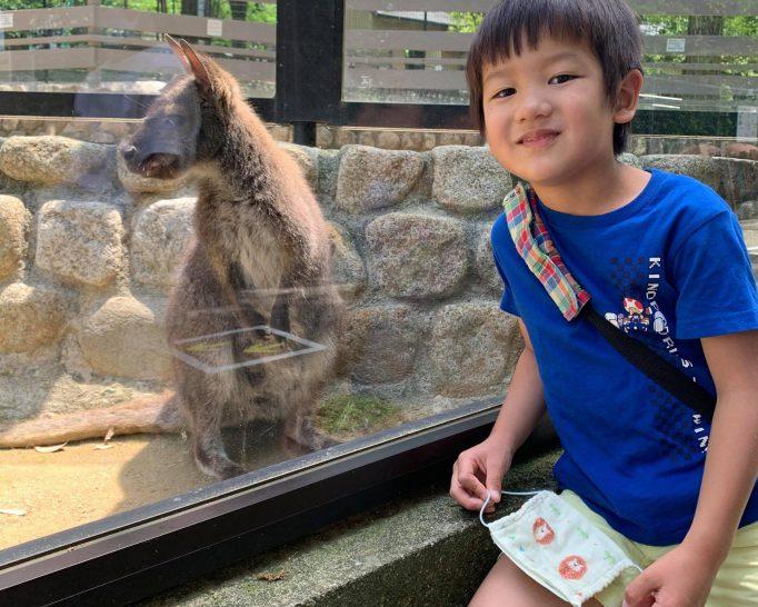ふれあい広場・ポニーの餌やりが再開! 公園に行く感覚で動物園に行けちゃう、池田市立五月山動物園
