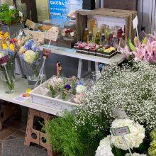 「おうちで心を和ませてくれたら」人気の花屋さん ARBO(アルボ)さんに行ってみました