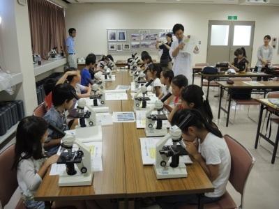 【募集】夏休みに顕微鏡で微生物を観察してみませんか?