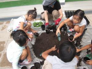 ほそごう学園細郷小学校『花いっぱいプロジェクト』の取り組み
