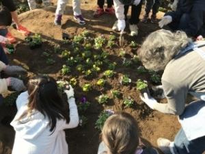 いけだ学園 呉服小学校「花いっぱいプロジェクト」