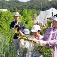 採れたての野菜って、あまーい 無農薬野菜の「畑で朝ごはん」で野菜パクパク食べちゃおう!