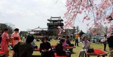 4月2日(土)・3日(日) に、池田五月山さくらまつりが開催されます。